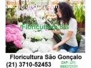 floricultura são gonçalo