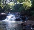 Vendo 190 Hectáreas,Cerro Azul  Misiones