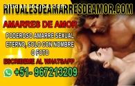 AMARRES SEXUALES REGRESARA EN UNA NOCHE