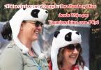 China clasico con Chengdu Oso Panda