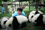 Viajes por Chengdu con Vacacionchina