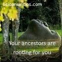 Spiritual Herbalist Healer & Fortune