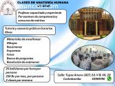 CLASES INTENSIVAS DE ANATOMÍA HUMANA