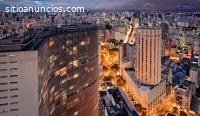 Email Marketing Brasil, Banco de Dados