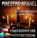 +56930993188 servicios porofecionales