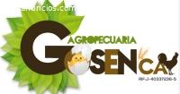 DISEÑO GRÁFICO DE LOGOS, TARJETAS,VALLAS