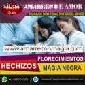 RECONOCIDO MAESTRO JUAN EXPERTO EN EL AM