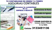Contador Publico Asesorías Contables