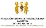 CREACIÓN DE ONG