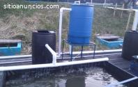 Descubre más sobre la acuicultura