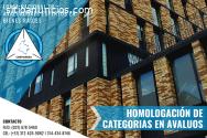 HOMOLOGACIÓN DE CATEGORIAS EN AVALUOS