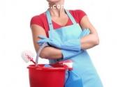 Limpieza y servicio domestico