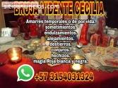 NIDIA AMARRES  3154031324