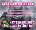 PROCESOS DE AMOR Y DOMINACION 3103924650