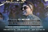 Shows de reggaetón en Bogotá - Músicos