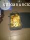 Tenemos lingotes de oro y polvo de oro p