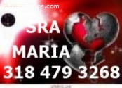 VIDENTE MARIA AMARRES 3184793268