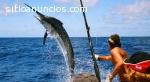 Señuelo del Pacìfico  Costa Rica Fishi