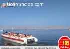 ISLA BALLESTA - PARACAS EN PERU