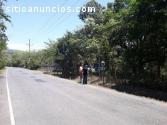 Vendo 2 lotes en Tambor Paquera