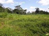 Vendo hermosa y util propiedad en Upala