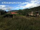 TERRENO DE VENTA EN CHUQUIPATA, AZOGUES