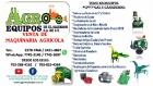 VENTA DE  MAQUINARIA AGRICOLA Y GANADERA