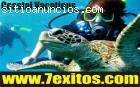 Gana Dinero con Coastal Vacations