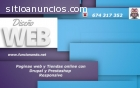 Diseño paginas web presenciales ecomomic