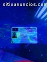 kupiti vozačku dozvolu, kupiti putovnicu