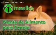 Planta de Alimento para Conejo