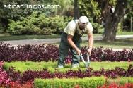 Seguro de furgoneta para jardineros
