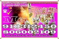 TAROT  LAS 24 HORAS 910312450