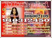 TAROT MERAKI 910312450-806002109