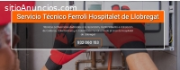 Técnico Ferroli Hospitalet de Llobregat