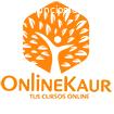 venta de cursos online