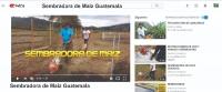 SEMBRADORA DE MAIZ, ARROZ, MANI, FREJOL