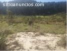Terreno en venta San Miguel Petapa