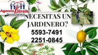 Agencia de Jardineros a tus ordenes