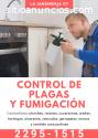 Control de Plagas y fumigación