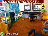 Green Resort, SPA