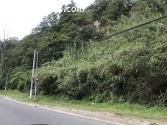 Terreno en Balcones San Cristóbal