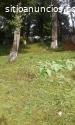 Terreno en venta en Choacorral San Lucas