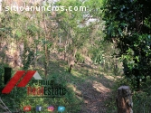 venta de finca en niquinohomo-nicaragua
