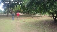 VENTA DE TERRENOS EN LOS ALTOS-MASAYA