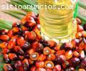 Olio di palma,olio di girasole,olio di c