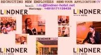 Receptionist, amministrativi  necessari