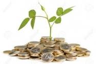 Servizio, finanziamenti e prestiti