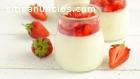 Búlgaros de Leche Yogurt Kéfir y Tíbicos