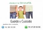 Guarda y Custodia DF y Estado de México
